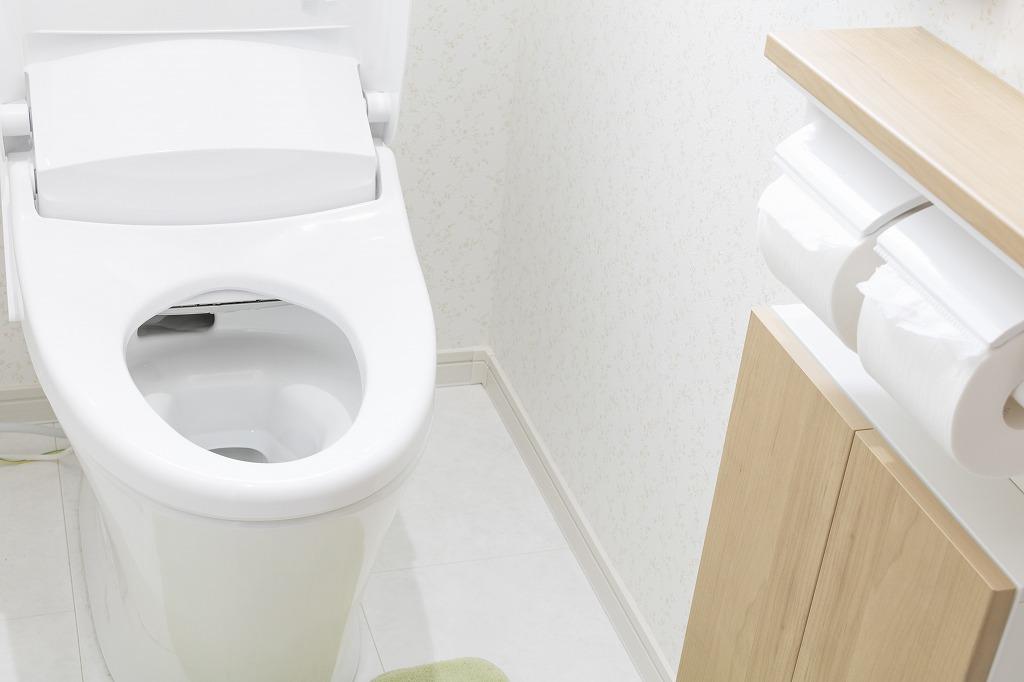 こんな症状に要注意!トイレでよく発生するトラブルとは?